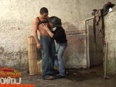 Latin gauchos bareback fucking in barn