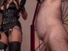 Mistress Tangent weights and shocks helpless balls of slave