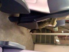 Jerking off in public transport 7