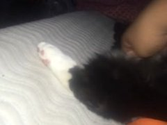 Rubbing Black Pussy (720P HD)