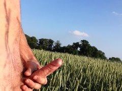 cumshot in the fields