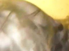 la chienne - visitez le site baise24