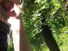 Jerk off in the Woods