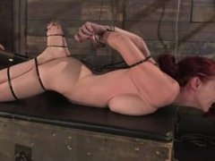 Berlin - Ziptied Tight & Vibed
