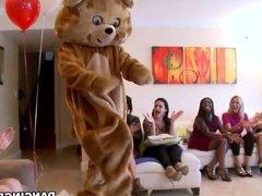 Dancing Bear Divorce Party