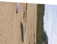 Nudist beach whiteford sands part 2