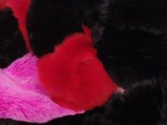 Fox fur stroking #1