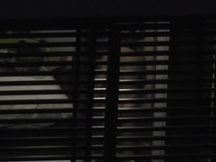 Hotel Window 131