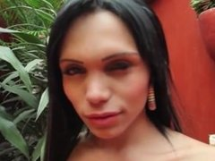 Hot Shemale vibrates her ass until she cums.