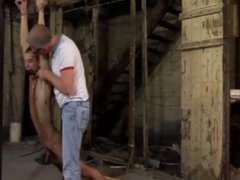 milking and swallowing