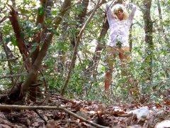 dans les bois 1