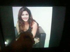 Cum tribute on Sonarika Bhaduria's hot milky thighs