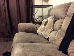 On the sofa crossdresser fun