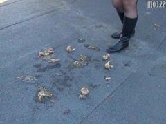 boots crush crawad