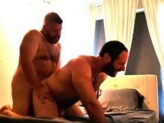 Two Bears Fuck In Bed