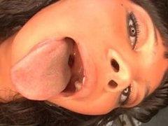 Tequila Green Lolli Long Tongue