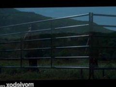 Rawhide #1, Scene 1