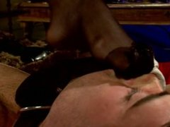 Maitresse Madeline Teases Slave With Her Mouth Pussy and Handjob - Scene 1