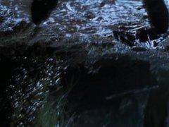 T-Rex Foot Squish (Upside Down)