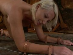 Beautiful Blonde with Big Tits gets Oiled up and Used as a Cum Canvas