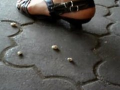 snail crush 5