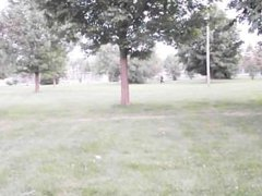 In The Park Continued