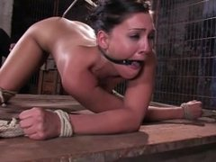Jade Indica fucks her own ass while suspended!