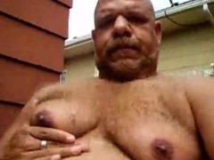 bears tits play...