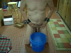 Mistress P's slave pees in a bucket just so She can watch