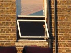 Window Watching 6 (Quick Flash)
