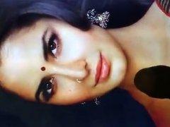 Katrina Kaif cum tribute