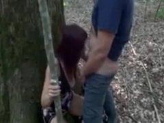 prise contre un arbre