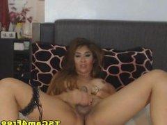 Hottie Shemale Jacks Off her Hard Dick