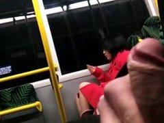 Public masturbation in the bus