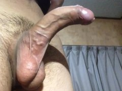 Show of curve cock