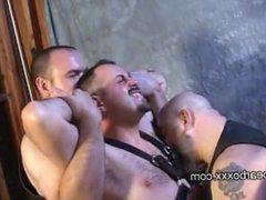 Bear Party Volume 3