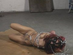 Latin Beauty led on a leash and chained to the floor