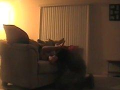 Fucking stranger on couch hidden cam