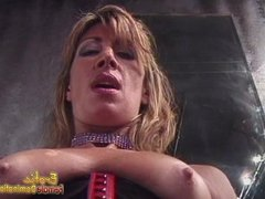 Naughty stud shows off his blowjob skills on a long strap-on