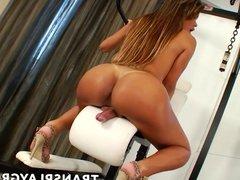 Amazing brunette brazilian shemale slut stroking her cock