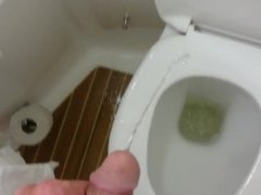 messy piss in hotel toilet