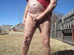pissing in the back yard