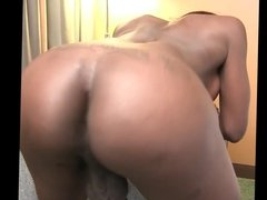 shemale black ass