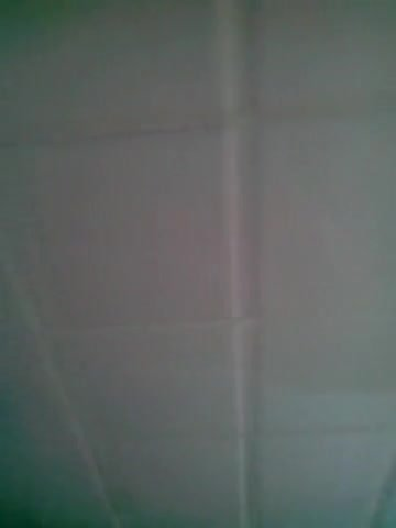 Branle a poil aux wc du boulot