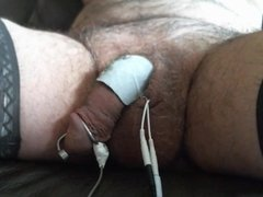 Anal plug Ruby and  urethral electro stimulation
