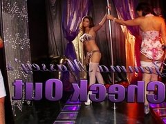 Group of sexy pole dancing babes have fun in the club
