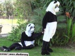 Nicole Aniston & Lucas Frost Panda Style