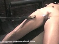 Attractive brunette filly enjoys having her butt and her feet whipped
