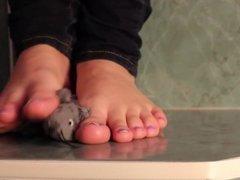 Stuffed Mouse Crush