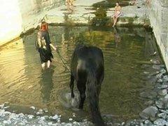 Three girls bathing a black horse